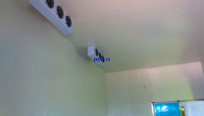 Lắp đặt thi công kho lạnh tại Vĩnh Phúc.
